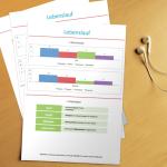 Bewerbungsvorlage Infografik Colored Lebenslauf 2
